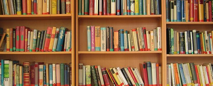 livros site