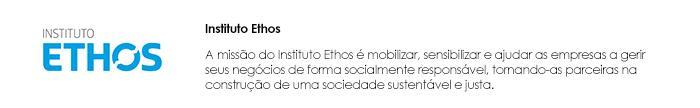 Instituto Ethos site
